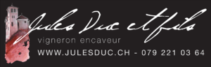 Logo Pied
